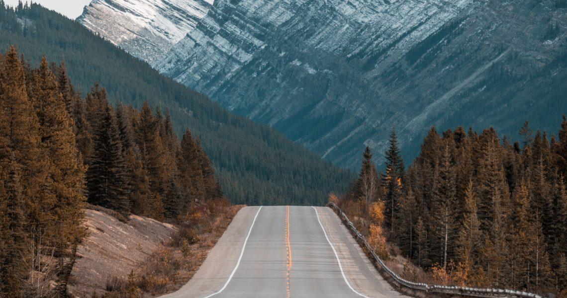 Imagen del camino